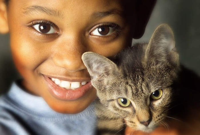 Mon chat peut-il me transmettre une maladie?